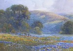 Percy Gray - Poppie Lupine and Oaks