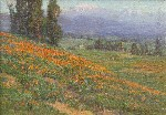 Benjamin C. Brown - Poppies with Mount Baldy in the Distance