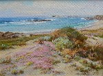 Albert Thomas DeRome - Spring Dunes - Bird Rocks - 17 Mile Drive