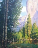Gregory Hull - Yosemite Majesty