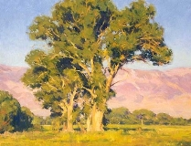 Gregory Hull - Owens Valley