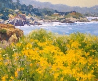 Gregory Hull - Pt. Lobos Poppies