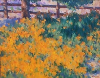 Gregory Hull - California Poppies
