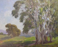 George Demont Otis - Lemon Eucalyptus