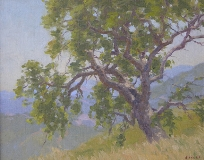 Gregory Hull - Hillside Oak