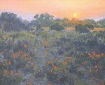 Gregory Hull - Sunset Poppies